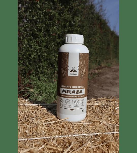 MELAZA (1 L)
