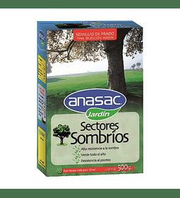 SEMILLAS PASTO PARA SECTORES SOMBRIOS (500 G)