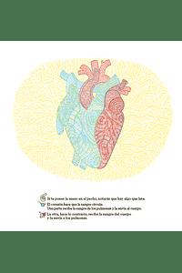 ¿Qué se esconde dentro del cuerpo humano?
