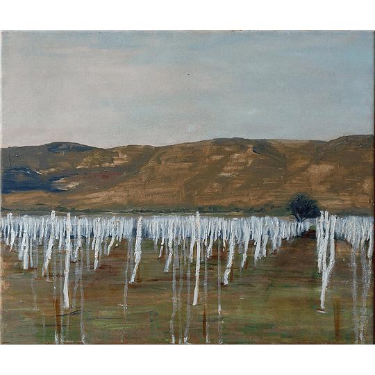 Mara Santibañez - Plantación