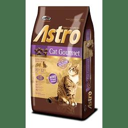 Astro Cat Gourmet Saco 10 Kg