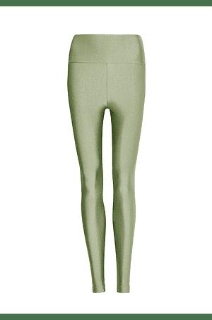 Calzas Oliva