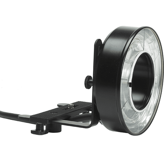 Arriendo de Ringflash Profoto para generador Acute 2