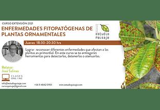 CURSO ENFERMEDADES FITOPATÓGENAS DE PLANTAS ORNAMENTALES