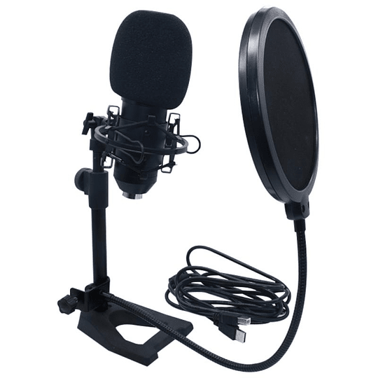 Accuracy Pro Audio EM700 Microfono Condensador USB