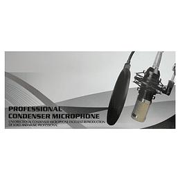 Micrófono Condensador Pack Evzsound