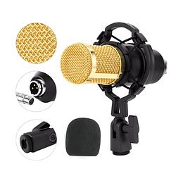 Micrófono Condensador tipo bm800 Evzsound