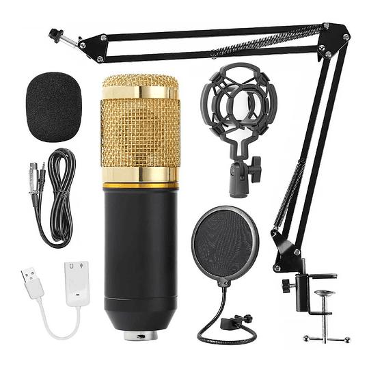 Kit Microfono condensador con accesorios Evzsound