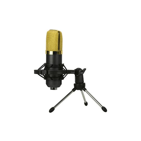 Microfono con atril 3D Fx B2 Kit Streaming Black
