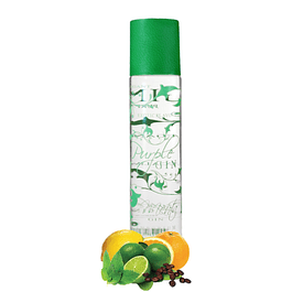GIN 70cl 38% MINT