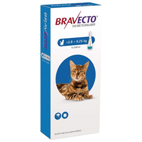 BRAVECTO PIPETA GATO >2.8 - 6.25 K.