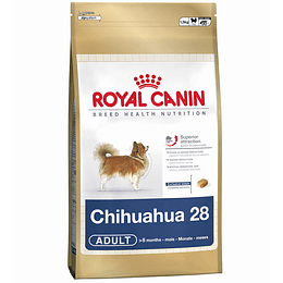 ROYAL CHIHUAHUA ADULT 1 K.