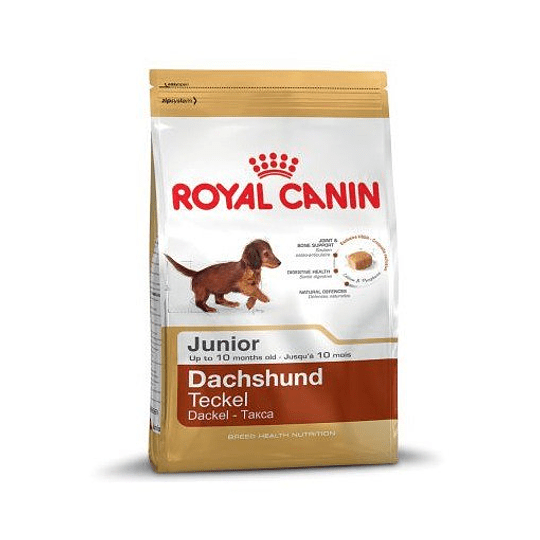 ROYAL DACHSHUND 2.5 K.