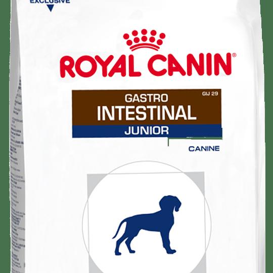 ROYAL GASTROINTESTINAL CANINO JUNIOR 2 K.