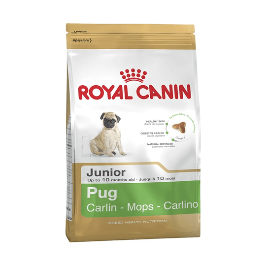 ROYAL PUG JUNIOR 2.5 K.