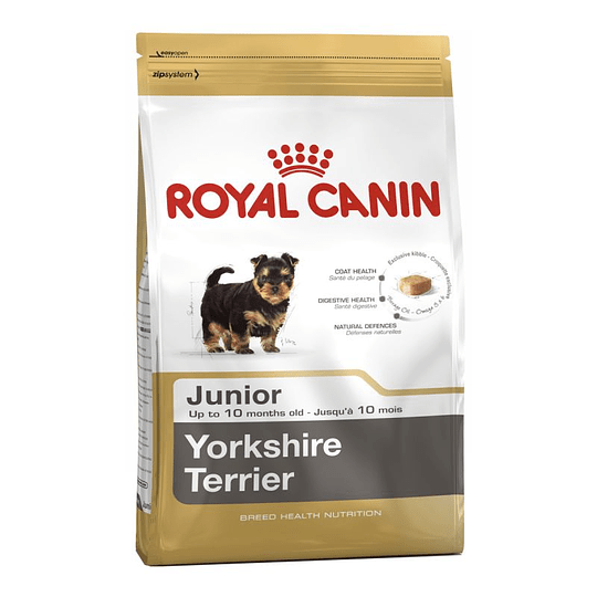 ROYAL YORKSHIRE TERRIER JUNIOR 1 K.