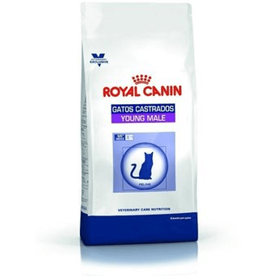 ROYAL YOUNG MALE 1.5 K.