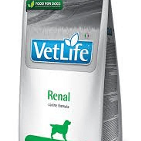 VET LIFE RENAL CANINO 2 K.