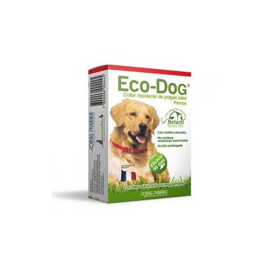 COLLAR ECO DOG