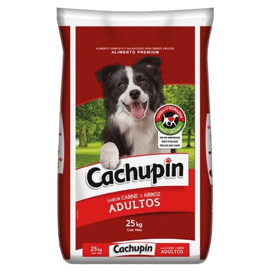 CACHUPIN ADULTO