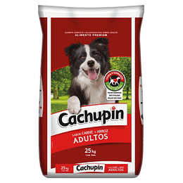 CACHUPIN ADULTO 25 K.