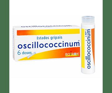 Oscillococcinum , 0.01 ml/g 6 Recipiente unidose 1 g Grânulos
