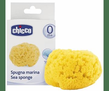 Chicco Esponja Marinha Grande