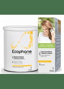 Ecophane Biorga Pó 3,53g x 90 doses + 7 Saquetas