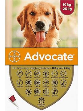 Advocate Cães 10-25kg, 250/62,5mg 2,5mlx3 Pipetas Solução Punctiforme