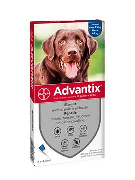 Advantix Cão Solução 4mlx4 +25kg, 400/2000 mg solução punctiforme VET