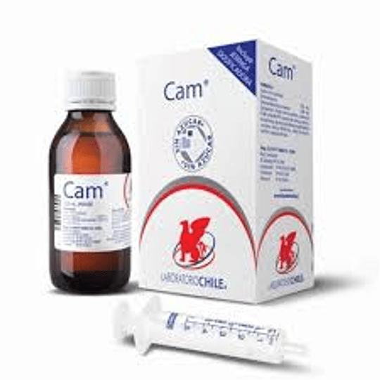 Cam Jarabe 120 ml