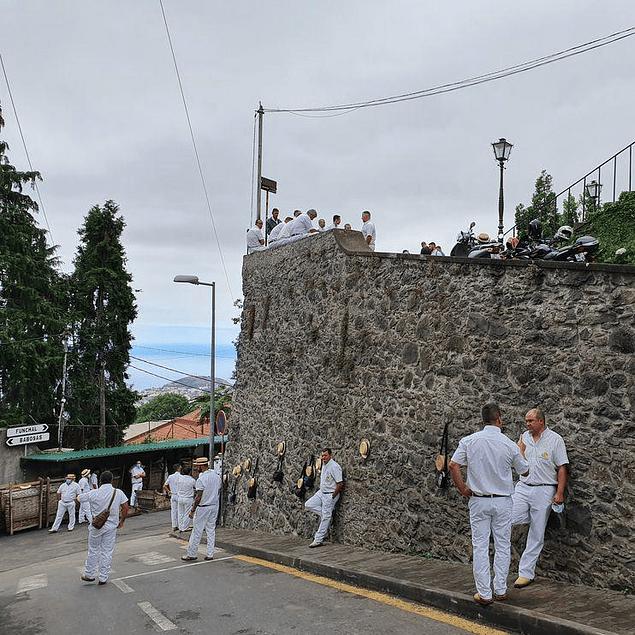 MONTE E JARDIM BOTÂNICO