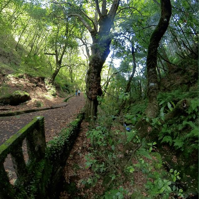 BALCÕES - RIBEIRO FRIO