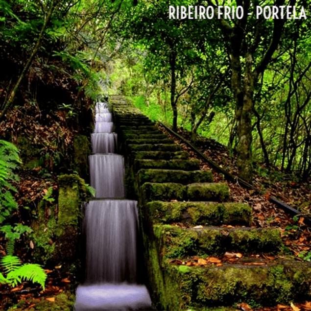 RIBEIRO FRIO I PORTELA