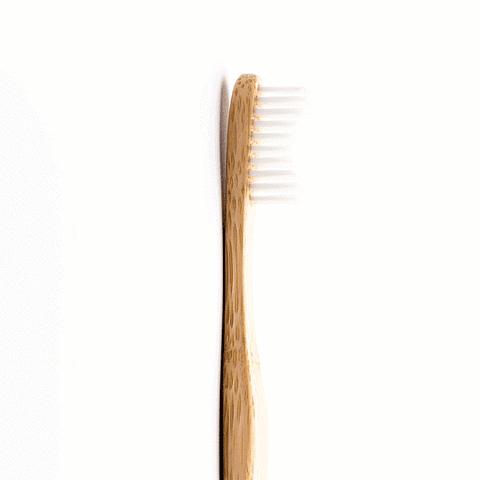 Cepillo adulto cerdas suaves - blanco