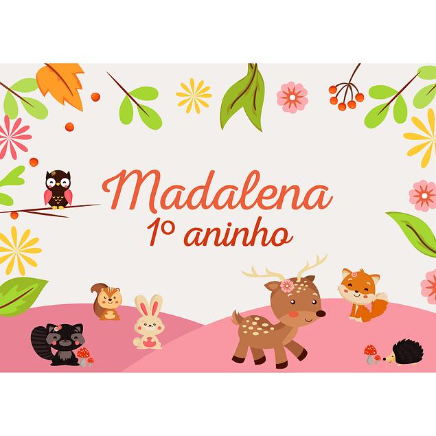 Produtos Festa Animais do Bosque