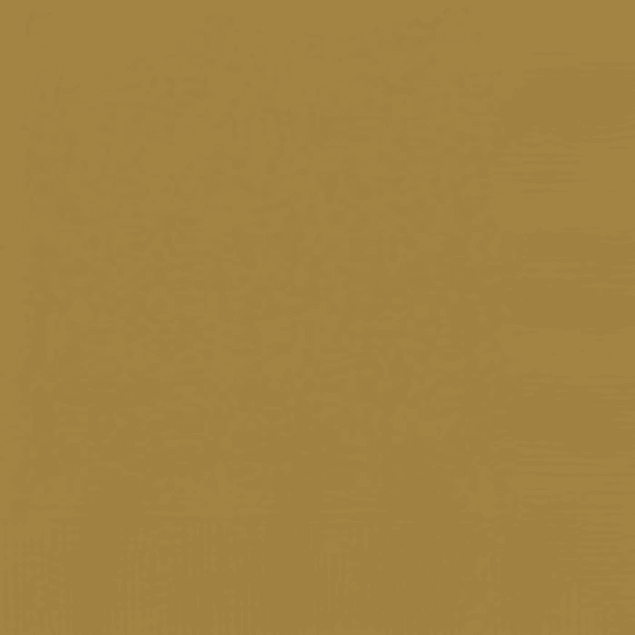 20 Guardanapos (Várias Cores)