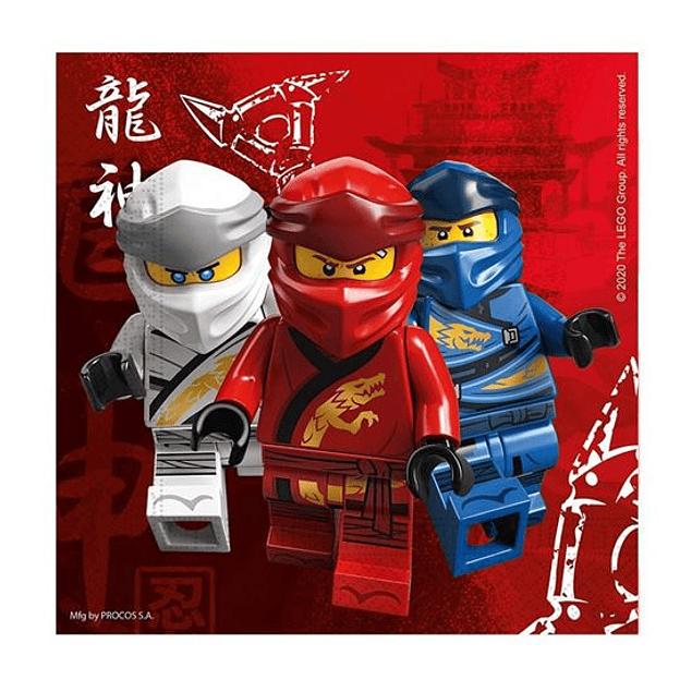 Festa de Aniversário em 24H Ninjago