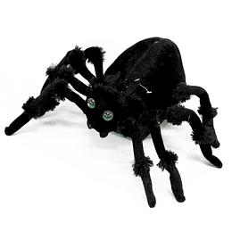 Araña Negra Mov 1 Uni