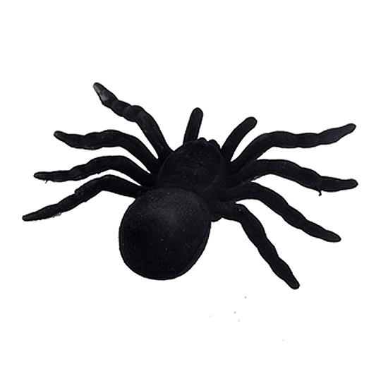 Araña Negra Grande 1 Uni