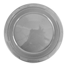 Plato Plastico 23 Cm Plateado 10 Uni