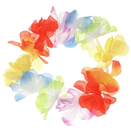 Cintillo Hawaiano Multicolor 1 Uni