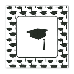 Servilleta Graduacion Neg/Bca 20 Uni
