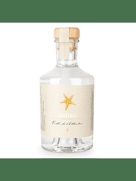 Vodka do Atlântico - Brejinho da Costa