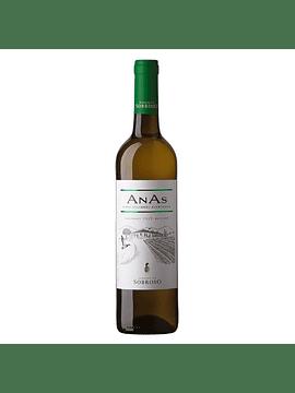 Anas Branco, 2019