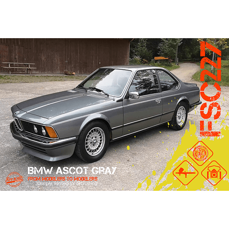 Ascot Gris BMW