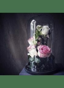 Workshop Fanal con Flores Frescas (Sábado 10 de Agosto)