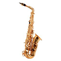 Saxo alto LSXA1, incluye estuche