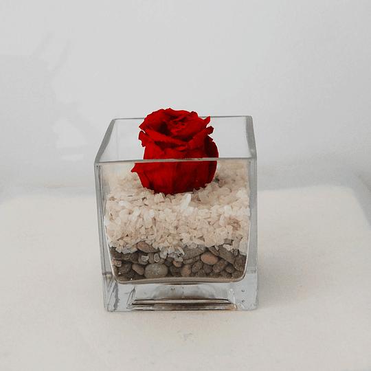 Rosa Preservada en Florero