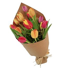 Cono de 10 Tulipanes